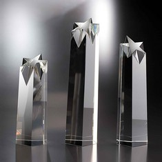 "14"" Rock Star Crystal Star Award"
